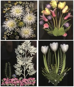 Four pictures of flowers including daisies and chrysanthemums
